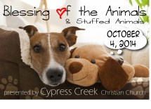 Prayer Of Blessing The Animals - Year of Clean Water