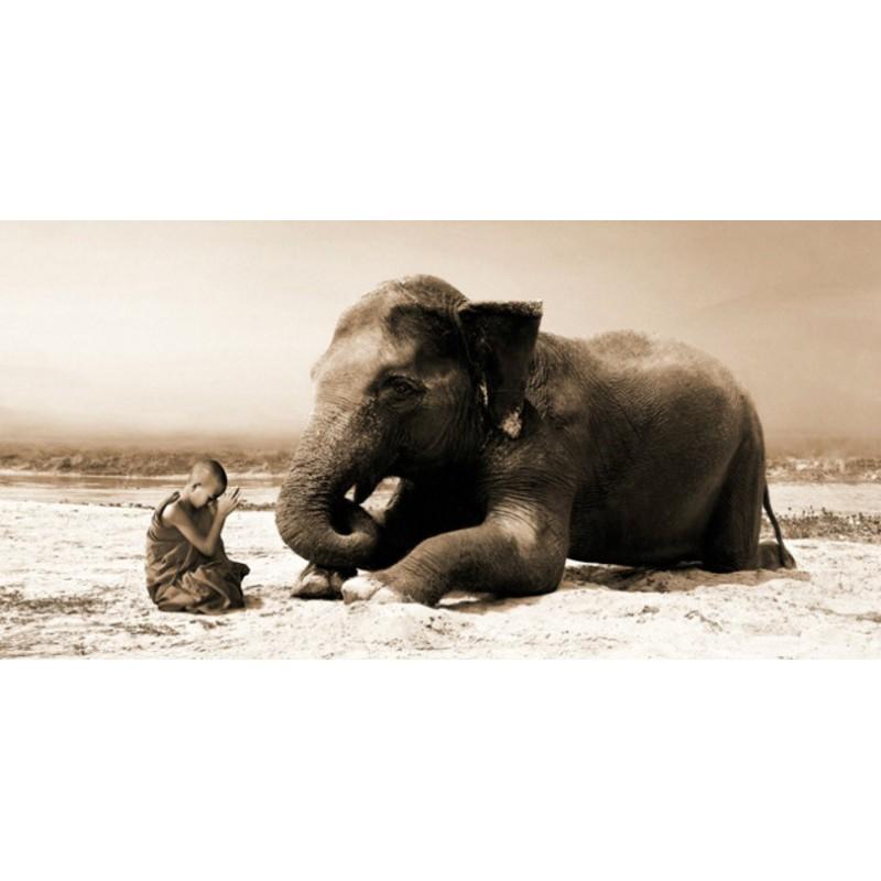 Quadro Bambino e Elefante Foto Stampa su Mdf o Tela