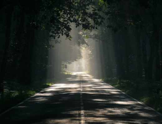 Walking in the Light of Abundant Life
