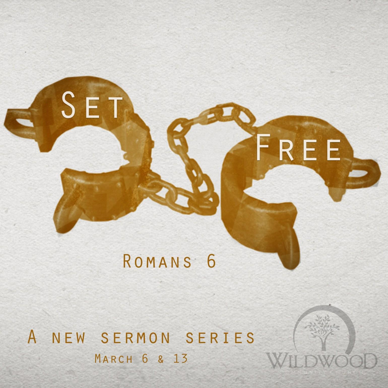 Set Free Insta Promo.001