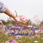 Reviving the Soul Habakkuk 3:2