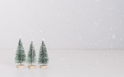 Socially Distanced Christmas Events
