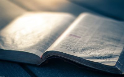 How to Memorize Scripture by Accident