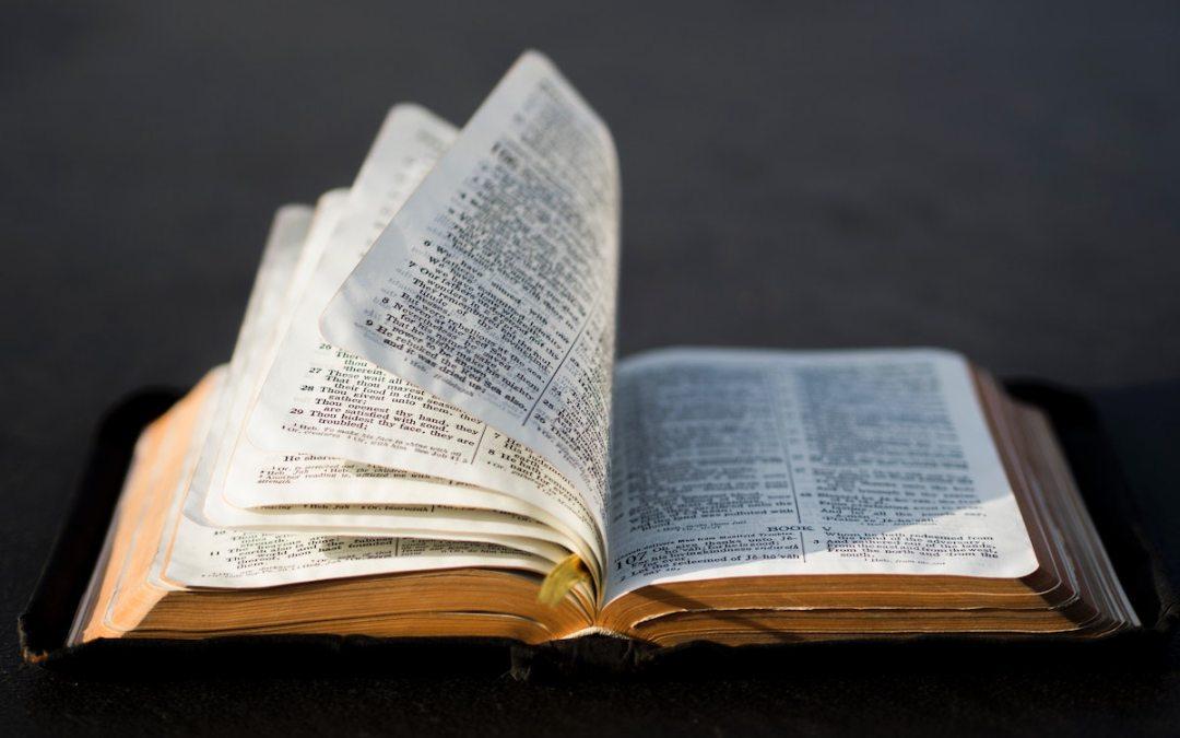 The Warrenton Declaration on Medical Mandates, Biblical Ethics, & Authority