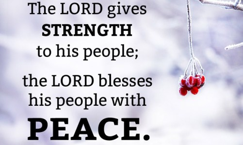 43 Reassuring Bible Verse on Peace