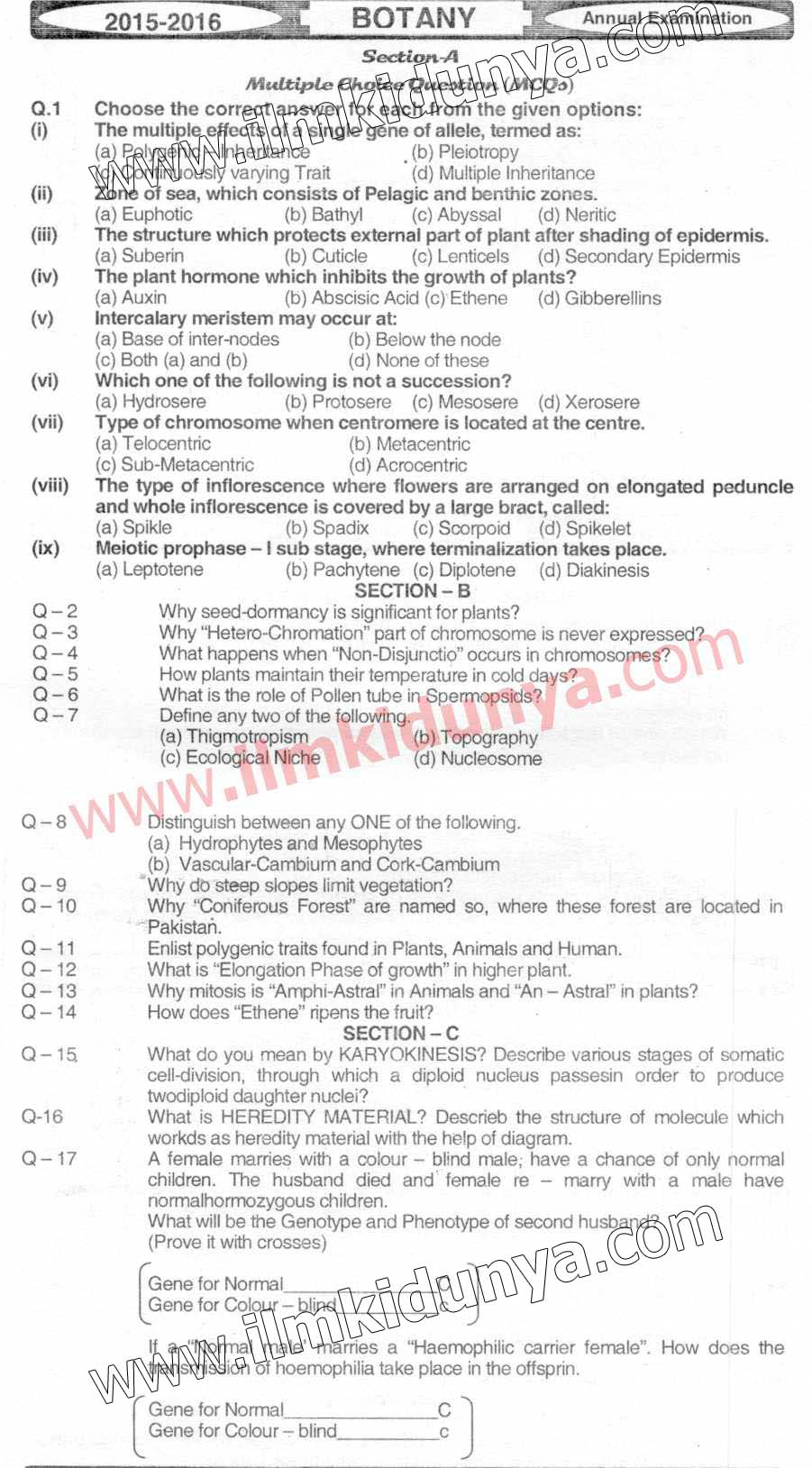 Past Papers 2016 Hyderabad Board Inter Part 2 Botany