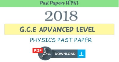 Physics term papers
