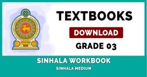 Grade 3 Sinhala Workbook