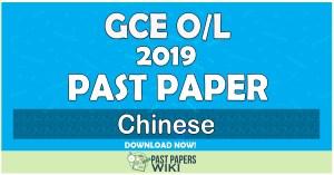 2019 O/L Chinese Past Paper | English Medium