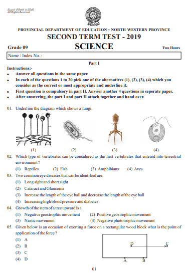 Grade 09 Science 2nd Term Test Paper 2019 English Medium – North Western Province