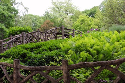 Approaching Shakespeare's Garden