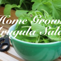 Home Grown Arugula Salads: Recipe