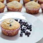 {Vanilla Blueberry Muffins} – Muffins cu afine