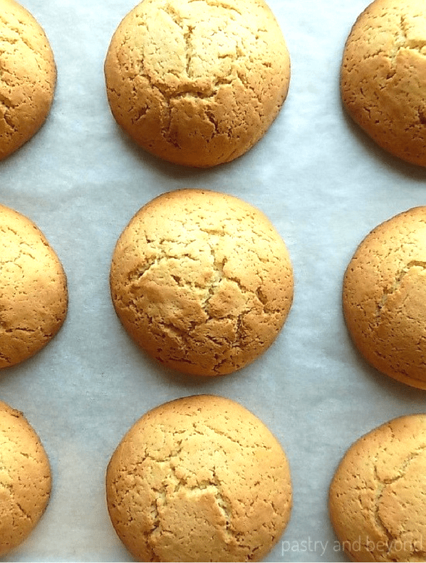 Overhead view of baked cakey vanilla cookies on a parchment paper.