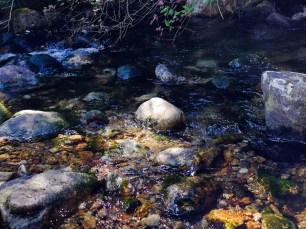 Bass Creek in Stevensville Montana early September, drought season.