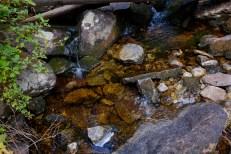 low waters seen while hiking Camas Creek Trail to Camas Lake Montana