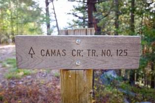 Camas Creek Trail No. 125 Selway Bitterroot Wilderness