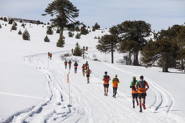 corredores en la nieve en edición anterior de k21 en Villa Pehuenia