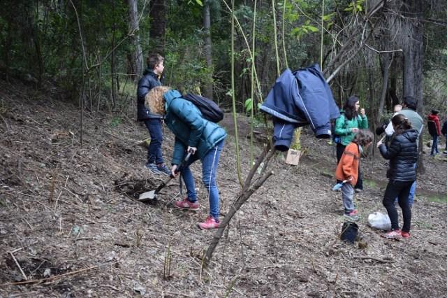 Personas de Arbolando el Mundo haciendo pozos para plantar los árboles