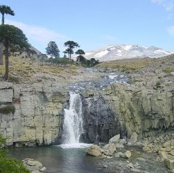 Cascada con araucarias de fondo. Una de las paradas del sendero de las cascadas en Caviahue