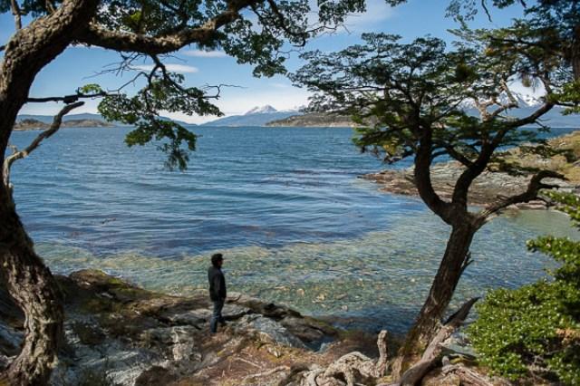 Persona contemplando el lago, rodeado de árboles en el Fin del Mundo.
