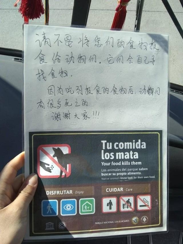 Volante traducido al japonés de Tu Comida Mata.