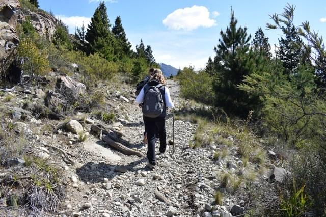 Mujer con bastón haciendo subiendo por una pendiente. Haciendo senderismo en la naturaleza.