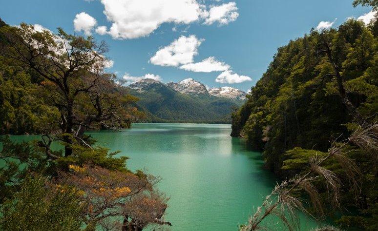 Portada Parque Nacional Los Alerces
