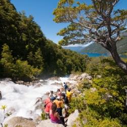 Bosque en Esquel, Patagonia Andina