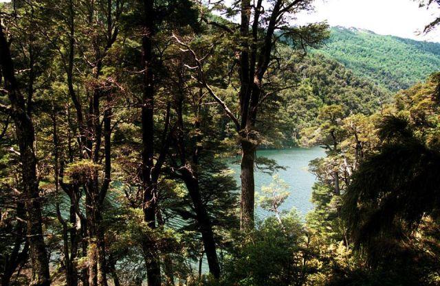 Laguna escondida en San Martín de los Andes.