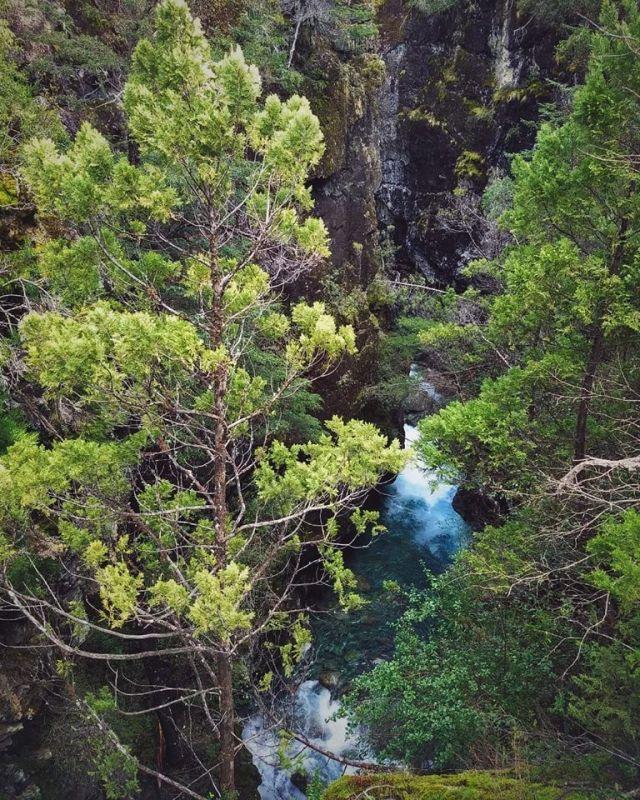 Area Natural Protegida Río Azul - Lago Escondido -ANPRALE- en El Bolsón