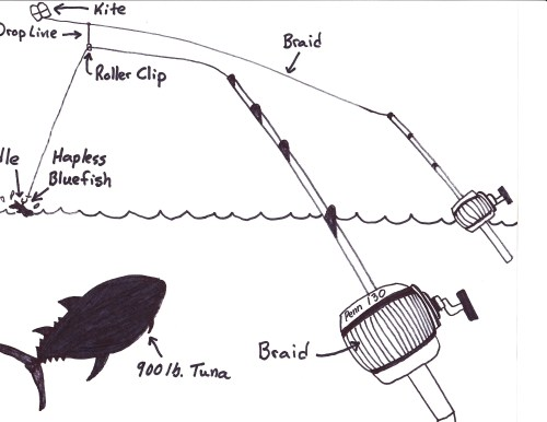 small resolution of  kite fishing for bluefin tuna 101 5