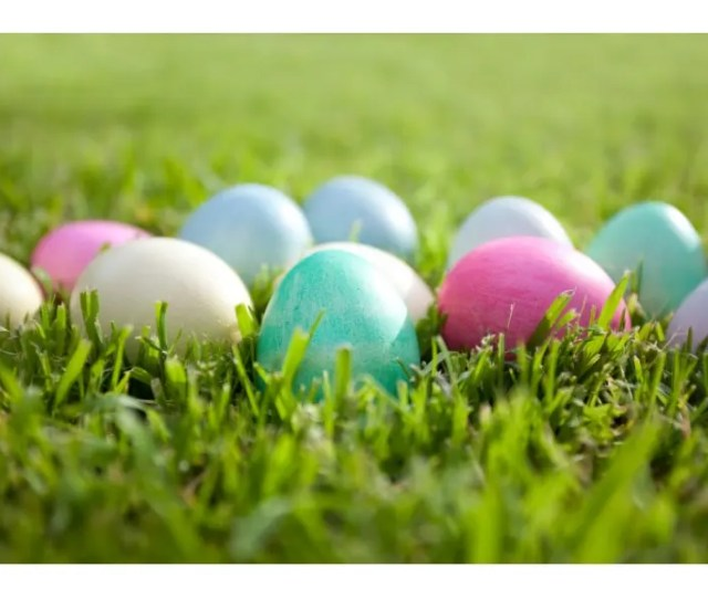 Reston Zoo Easter Egg Hunts This Weekend