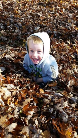 Playing in the fallen leaves