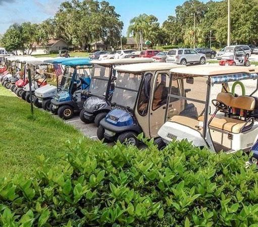 Golf Carts in Sun City Center Florida