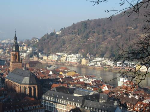 Heidelberg from the Castle by Allison Reid