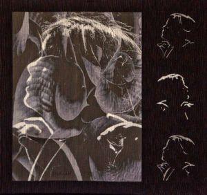Ohm de Marilyn Wall premiado quilt festival Houston 2011