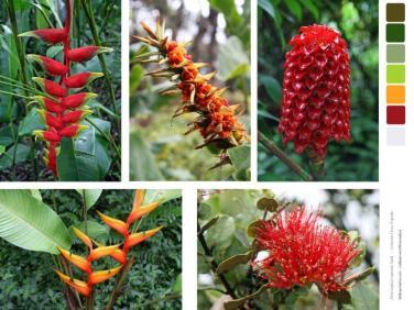 panel fotos impresas en tela para patchwork folores tropicales rojo verde