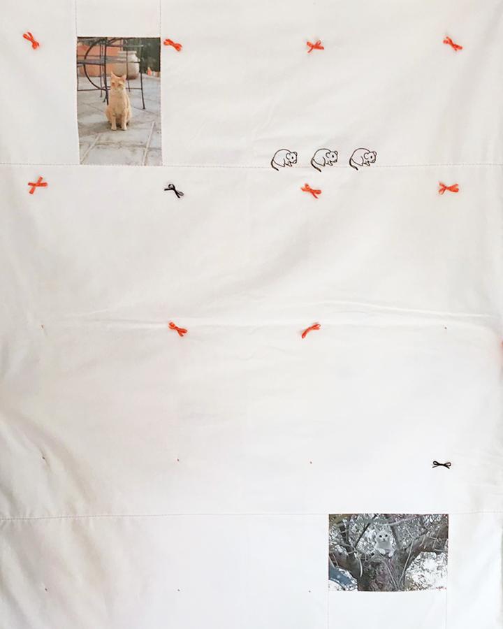 trasera de colcha de patcwhork personalizada con fotos de gatos impresas sobre tela