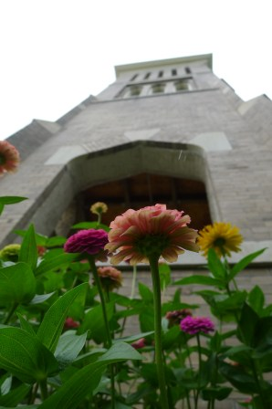 Flowers and Tower