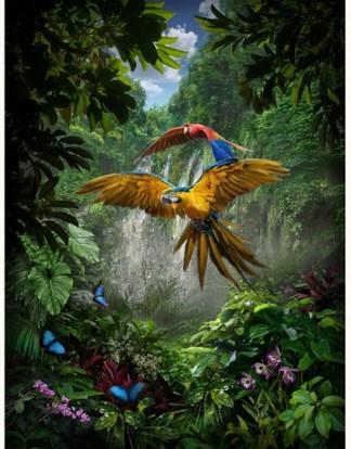 Call of the Wild Panel R4687-246-Amazon
