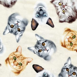Relaxing Cats C5752-Cream