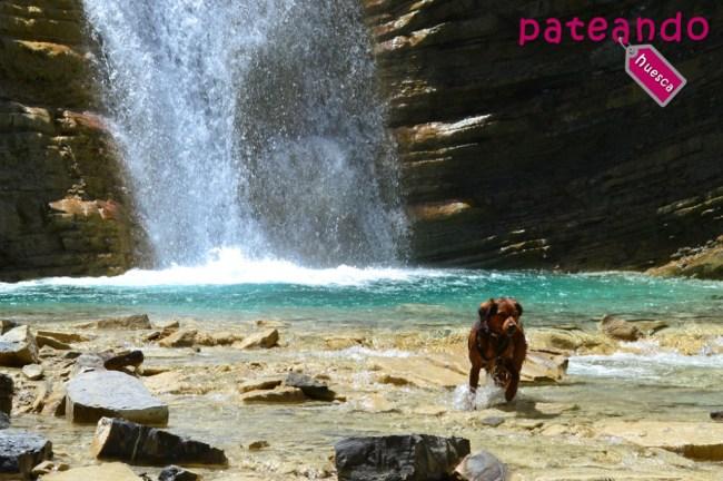 Badina en la cascada d´os Lucas
