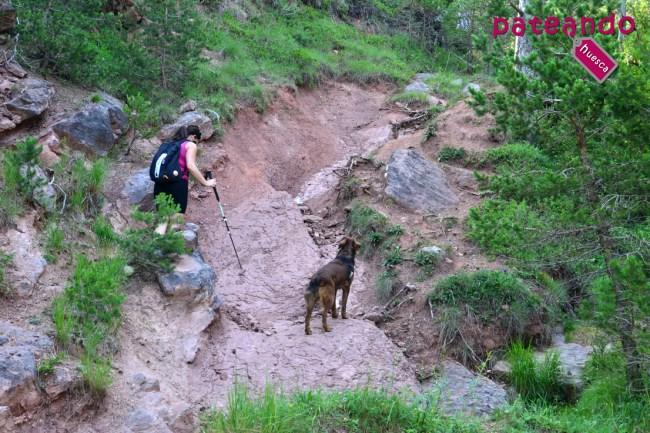 excursión al Pico las Calmas