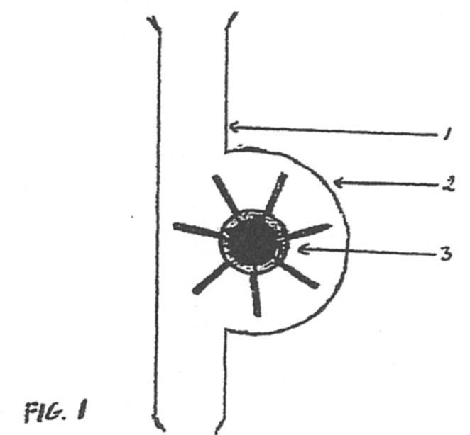 RAMIREZ SILVA,MARCELINO E. 6 patentes, modelos y/o diseños.