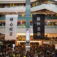 crowd of protestants in shopping centre