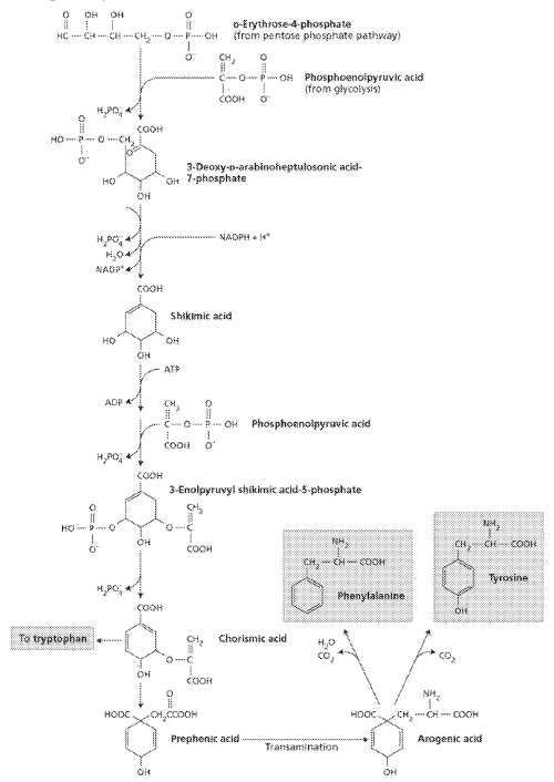 small resolution of figure imgf000151 0001