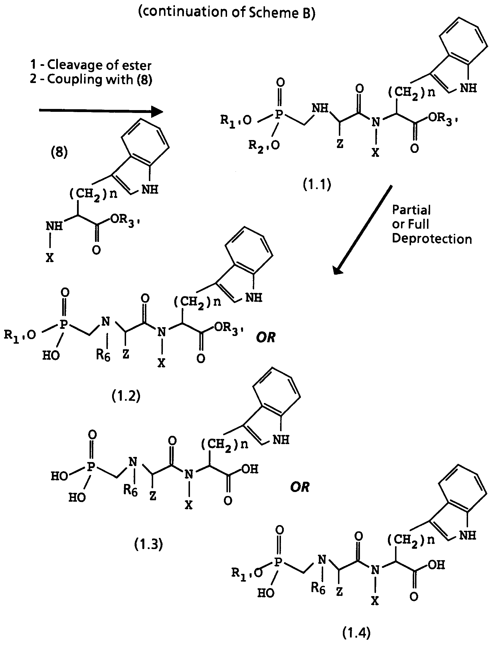 Dipeptide Sketch Templates