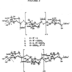 Carbohydrate Structure Diagram Holley Electric Choke Wiring Of Monosaccharide Carboxylic Acid Elsavadorla