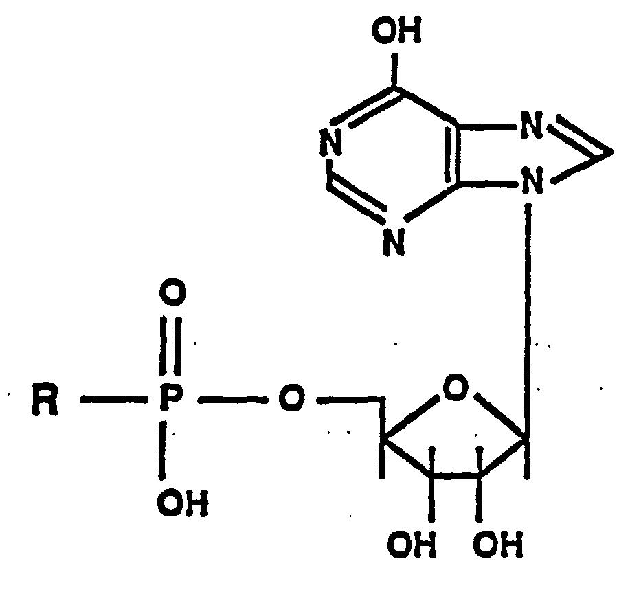 5'-Nucleotidase; Fosfatase Adenilato; Nucleotidase 5'AMP